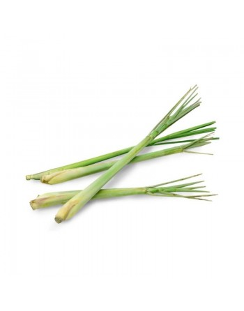 Citronella - Essential Oil...